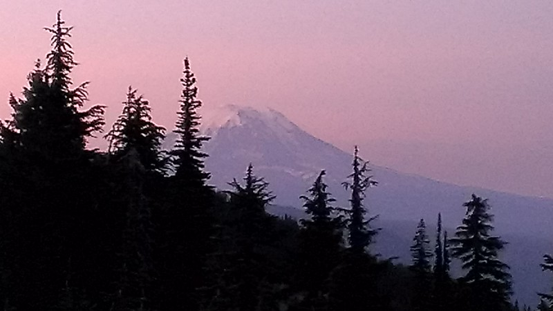Mt Adams from our campsite - near sunset