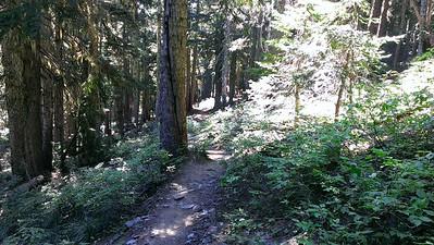 Goat Ridge Trail