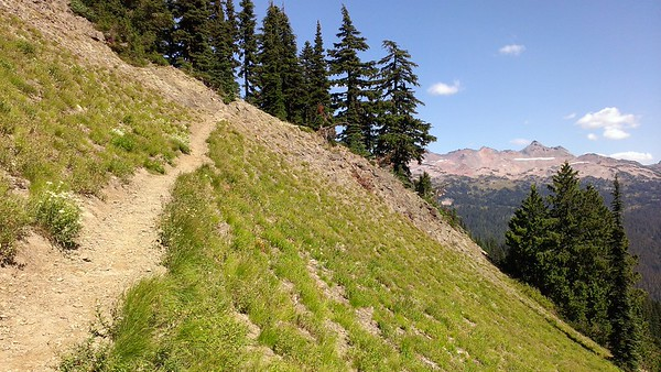 Heading up the Goat Ridge Trail