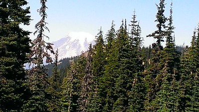 I think this was Mt Ranier - but it could be Mt Adams - one was to the north, the other to the south - both very close