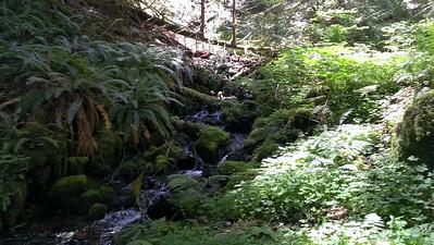 Creek from Huxley Lake?