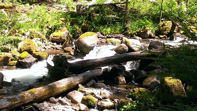 South Fork of the Roaring River