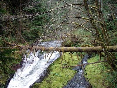 Top of Upper Falls - South Fork Clackamas River