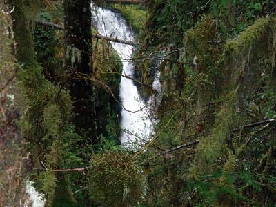 First look at upper Clackamas Falls - South fork of the Clackamas river