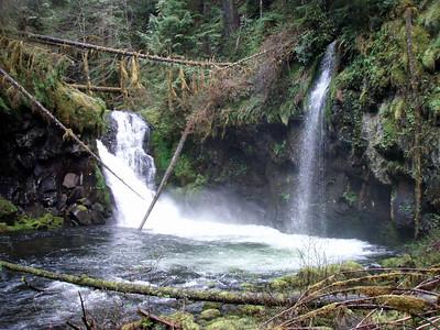 Upper Falls - South Fork Clackamas River