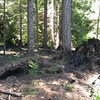 Damage from campfire at Huxley Lake