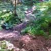 Little Creek Crossing on Huxley Lake Trail