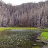 Lake Lenore