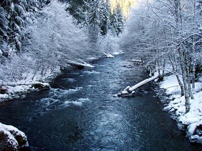 Hot Springs Fork of the Clackamas