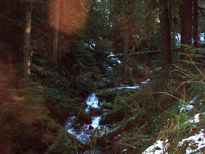 Three Lynx Creek below waterfall