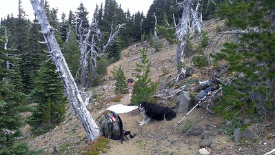 Olallie Butte Trail