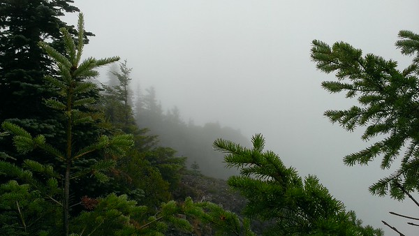 """The view of the """"point"""" of the overlook on Mt Mitchell"""