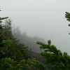 "The view of the ""point"" of the overlook on Mt Mitchell"