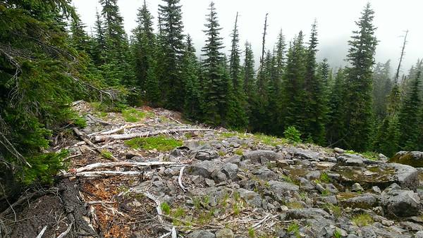 Rockfield on east end of Rimrock trail