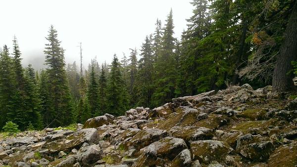 Rock field on east end of Rimrock trail