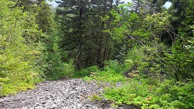 Rockslide on MP3 trail