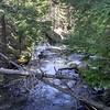 Mountaineer Creek downstream from the bridge
