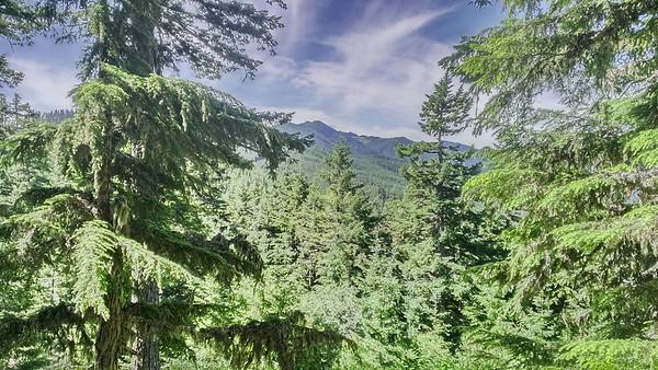 Fish Creek Mountain Trail
