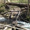 Old Bridge across Fall Creek
