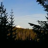 Tip of Mt Hood from Rho Creek Trail