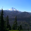 Mt Jefferson from Ruddy Hill