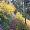 Beautiful fall colors at the first rockslide - this photo doesn't do it justice - the colors were flourescent!