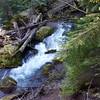Dickey Creek running fast