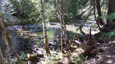 Elk Lake Creek near campsite