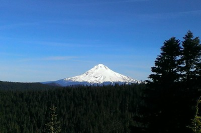 Mt Hood from the Helispot on Grouse Point Trail