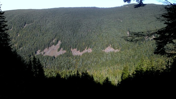 Looking across the South Fork or the Roaring River - There is another trail over there - the 511