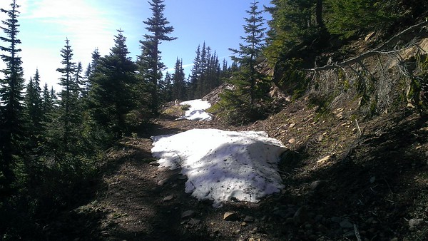 Beginning of Grouse Point trail