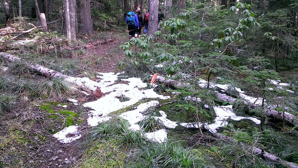 Tiny bit of snow at about 4700' on Rimrock trail