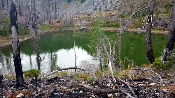 Un-named lake above Motherlode trail - much deeper than I thought it would be