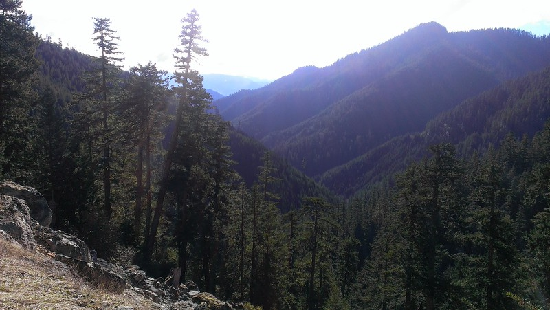 Nice view from the 1509 road on the way to the trailhead