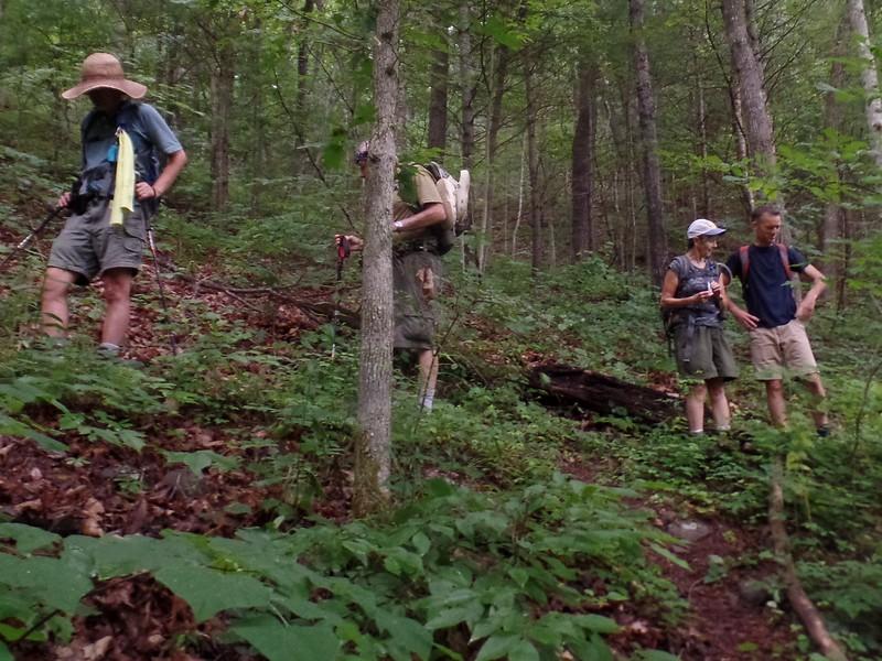Start of Knob Mountain Trail
