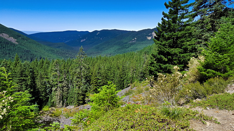 Looking down the Roaring River drainage from the 4610 road