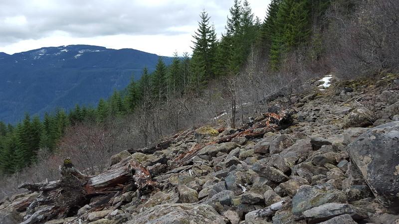 Big Rockslide on Cripple Creek trail
