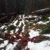 Snow on Eagle Creek trail