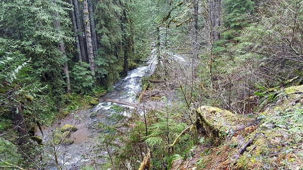 Eagle Creek - Clackamas