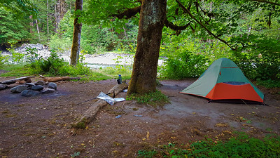 Camp at O'Neil Creek - East Fork Quinalt River