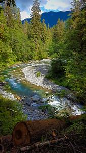 East Fork Quinalt River