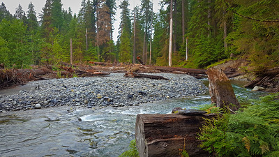 This is looking back at the major washout area - the trail used to go on the right saide of the photo - the log in the distance is the log we crossed over to the gravel bar on, then we crossed back over on another log.  East Fork Quinault River trail