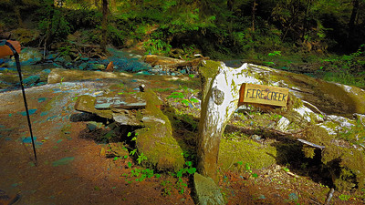 Signs at Fire Creek crossing on East Fork Quinalt River
