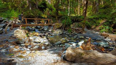 Bridge at Fire Creek crossing - East Fork  Quinalt River