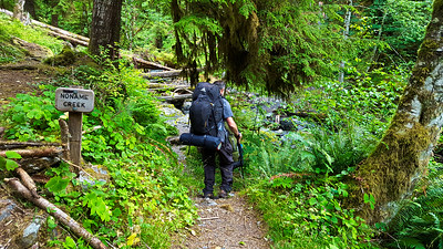 Noname creek crossing - East Fork Quinault River trail
