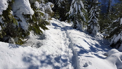 Our broken trail thru the snow