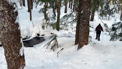 Un named creek (it was partially frozen) on Fanton trail