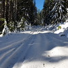 4614 - the only vehicles that have been down this road are snowmobiles