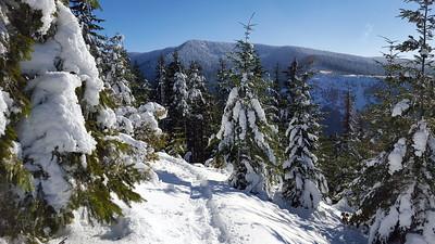 I believe this is Squaw/Tumala Mountain