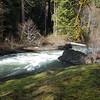 Neat side trail on Fish Creek